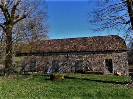 Barns and houses to renovate